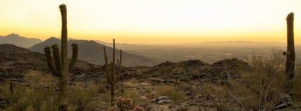 菲尼斯亚利桑那沙漠水平的横幅 免版税图库摄影