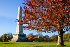 菲尼斯公园和惠灵顿纪念碑 都伯林 爱尔兰 库存图片