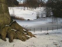 菲尼斯公园都伯林,雪树的爱尔兰,结冰的湖 免版税库存照片
