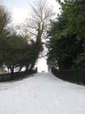 菲尼斯公园都伯林,雪的爱尔兰 免版税库存图片