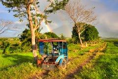 菲律宾三轮车 免版税图库摄影