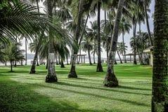 菲律宾风景海滩 库存图片