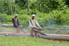 菲律宾2名的伐木工人 库存照片