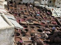 菲斯摩洛哥最旧的皮革厂世界 免版税图库摄影