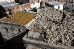 菲斯,摩洛哥皮革厂  免版税图库摄影