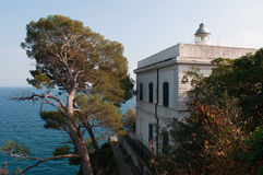 菲诺港,热那亚,利古里亚,意大利,意大利语里维埃拉,欧洲 免版税图库摄影
