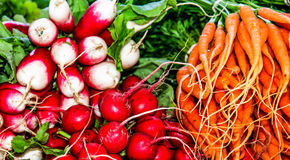 萝卜和红萝卜待售 库存照片