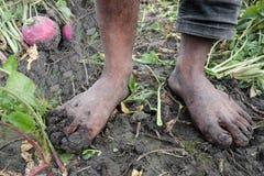 萝卜有泥泞的脚的农夫男孩 免版税库存照片