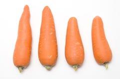 萝卜红色 库存图片