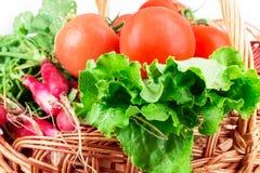 萝卜,蕃茄,莴苣,篮子 库存图片