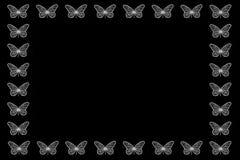 萤光白色蝴蝶边界 免版税库存照片