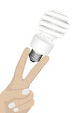 萤光的电灯泡 库存图片