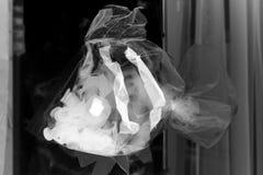 萤光的鱼 免版税库存照片