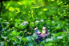 萤火虫与玩具夜在有萤火虫的森林里 免版税库存照片