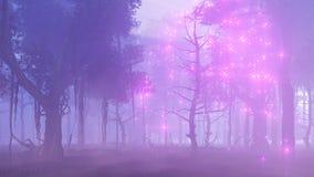 萤火虫光在不可思议的有薄雾的森林4K里 影视素材