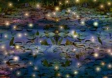 萤火虫和荷花池塘在晚上 库存图片