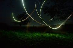 萤火虫在密林 库存照片
