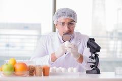 营养专家的测试食品在实验室 库存图片