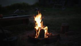 营火在晚上被点燃 影视素材