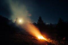 营火在森林在晚上 库存图片