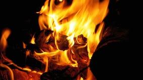 营火夜 烧注册橙色火焰 股票录像