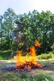 营火火焰在森林附近的在天 库存照片