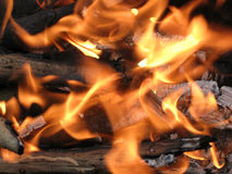 营火的灼烧的火焰 免版税图库摄影