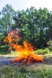 营火美丽的火焰  免版税库存图片