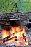 营火水壶 库存照片