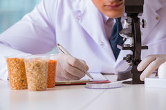 营养专家的测试食品在实验室 免版税库存照片