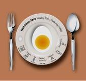 营养事实鸭子鸡蛋 库存照片