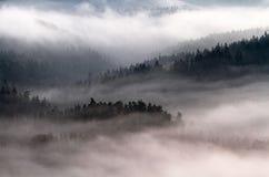 萨克森瑞士公园 免版税图库摄影