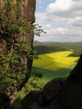 萨克森瑞士,德国 免版税库存图片