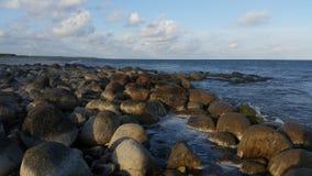 萨列马岛 免版税图库摄影