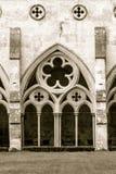 萨利大教堂使乌贼属口气出家 免版税图库摄影