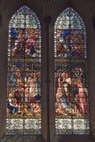 萨利大教堂污迹玻璃窗 免版税库存照片