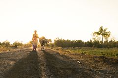萨利姆街道摄影印度泰米尔人nanu村庄摄影 库存照片