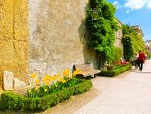 萨尔茨堡,奥地利- 2017年5月01日:美丽的Mirabell的部分在萨尔茨堡从事园艺 免版税库存图片