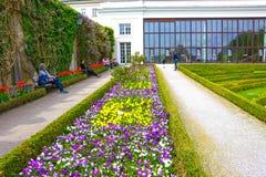 萨尔茨堡,奥地利- 2017年5月01日:美丽的Mirabell的部分在萨尔茨堡从事园艺 库存图片
