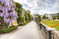 萨尔茨堡,庭院是布拉斯李树(Mirabelgarten) 图库摄影