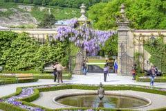 萨尔茨堡,庭院是布拉斯李树(Mirabelgarten) 库存照片