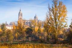 萨拉曼卡秋天视图有河和大教堂的 图库摄影