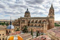 萨拉曼卡,西班牙大教堂  库存照片