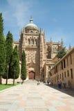 萨拉曼卡-大教堂 免版税库存照片
