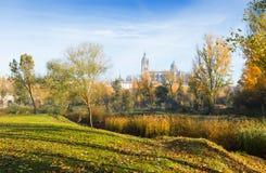 萨拉曼卡11月视图有大教堂的 库存照片