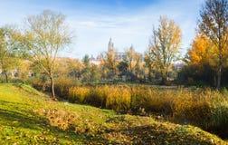 萨拉曼卡11月视图有大教堂的 库存图片
