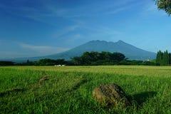 萨拉火山在茂物印度尼西亚 免版税库存照片