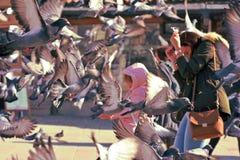 萨拉热窝,欧洲09 02 2018年,有妇女的飞行围拢的城市广场和孩子鸽子 库存图片