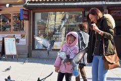 萨拉热窝,欧洲09 02 2018年,有母亲的城市广场和女儿哺养的鸽子 库存照片