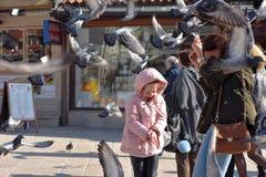 萨拉热窝,欧洲09 02 2018年,有母亲的城市广场和女儿哺养的鸽子 图库摄影